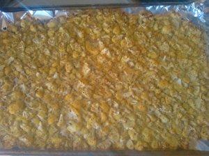 cauliflower roasted